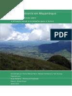 O Meio Ambiente em Mocambique.pdf