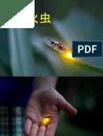 萤火虫和星星-课件