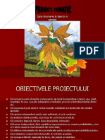 Prezentare-proiect-Zana Brumarie La Deal Si in Campie