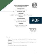 previo-9-organica-1.docx