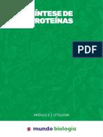 08. Síntese de Proteínas