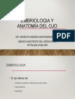 Embriologia Anatomia Del Ojo