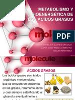 Diapositivas -Bioquimica -Acidos Grasos