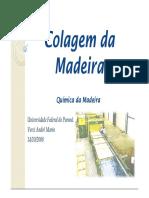 colagem Madeira (1)
