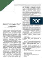 RD 001-2019-EF-68.01 Aprueban Lineamientos Para El Diseño de Contratos de Asociación Público Privada