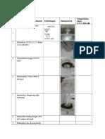 Laporan Praktikum Anorganik (1)
