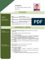 3-hoja-de-vida-casual-verde.docx