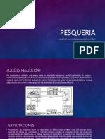 PESQUERIA.pptx