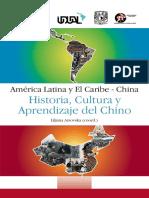 Redalcchina 2013 Historia
