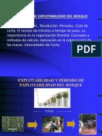 Clase 8_ Principio de Explotabilidad Del Bosque