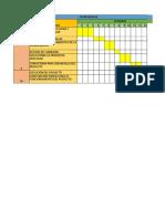 Cronograma Informe de Practicas