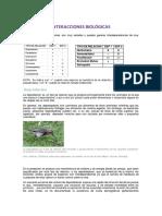 Interacciones Biologicas-biodiversidad III