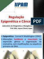 Apresentação GENE Epigenética