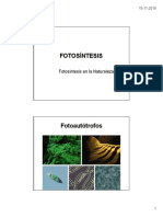 05 Fotosíntesis