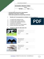 Evaluacion Sumativa Cnaturales Unidad2 2basico Abril 2011