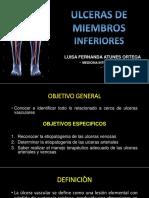 Ulceras de Miembros Inferiores