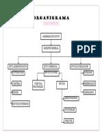 presntacion organigrama.docx