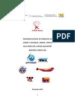 Documento Rector Pnfhsl(Propuesta ) Diciembre 2013