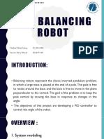 self balance.pdf