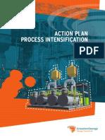 Action Plan Process Intensification