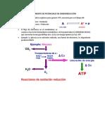 oxido/reduccion