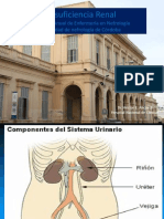 Insuficiencia renal aguda y cronica 2017.pptx