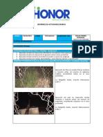 Informe Diario de Honor