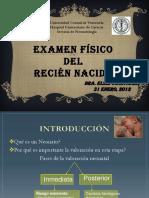 examenfsicoelsie-120212122324-phpapp01