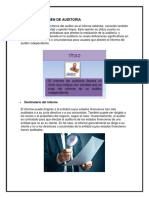 Informe Dictamen de Auditoria 2