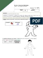 Prueba Matemática PARTE II