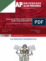 Plantilla Uap 2019-1b - Sesion 2. El Bloque de Constitucional y Dd Ff