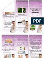 leaflet bumil.docx
