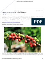 Types of Coffee That Grow in the Philippines