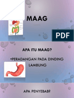 Maag definition