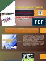 Descubrimientos Biotecnologia Animal