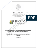 ANTEPROYECTO_GUIA_TEQUILA.pdf