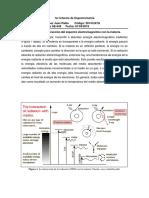 1er Informe de Espectrometría