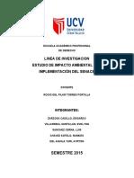 Copia de Estudio de Impacto Ambiental y de La Implementacion Del Senace(1)