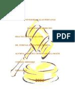 314135903-Practica-Procesal-Civil.doc