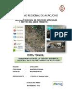 Pip Ayacucho