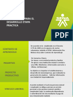 Alternativas Etapa Practica.pptx