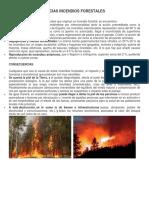 Causas y Consecuencias de Los Incendios Forestales