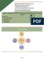 PROYECTO FORMULACION P1