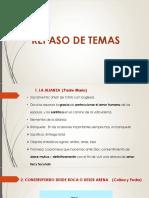 Amoren Acción 2.pptx