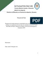 Proyecto Euler Velasquez