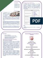 Diptico Historia de La Universidad Sjb