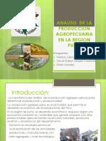 333analisis de La Produccion Agropecuaria