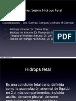 Simposio Cerpo; Conclusiones Taller Hidrops Archivo