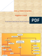Matrices y Determinantes CHUNG 1