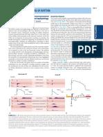 273 e Principles of Electrophysiology